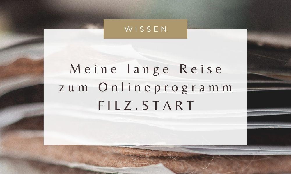 Blog Filz.Start